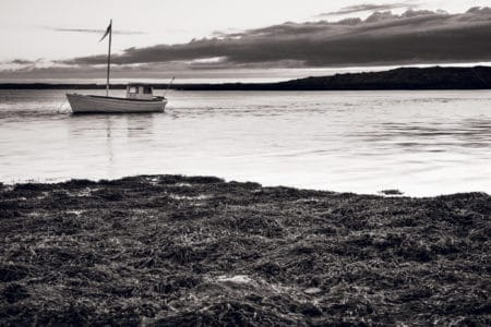 Island Borgarbyggð Fishing Boat